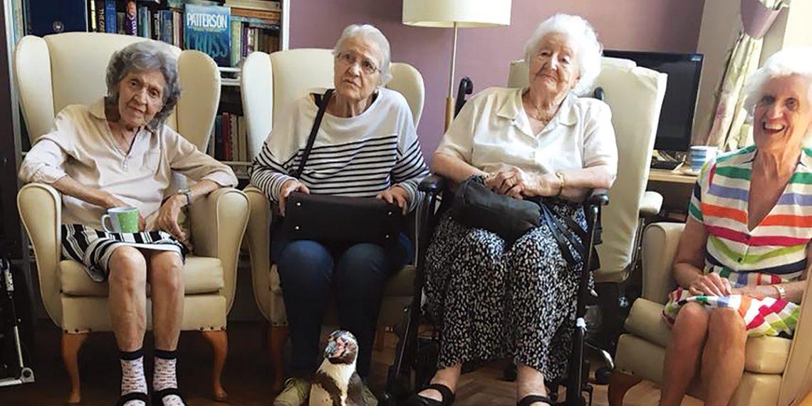The Grange Nursing Home